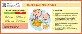 В преддверии новогодних праздников Роспотребнадзор рекомендует, как выбрать самые «праздничные» фрукты – мандарины.